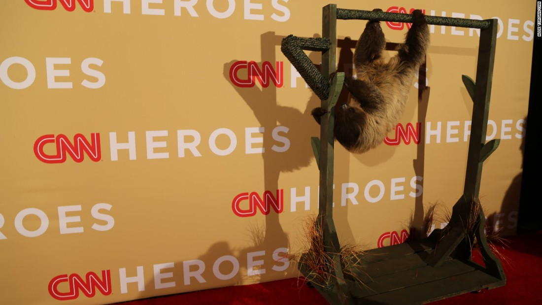 For the rest of the show, Snooki hung out backstage on her own red carpet.  Literally.