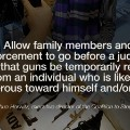 quote-guns-solutions-horwitz