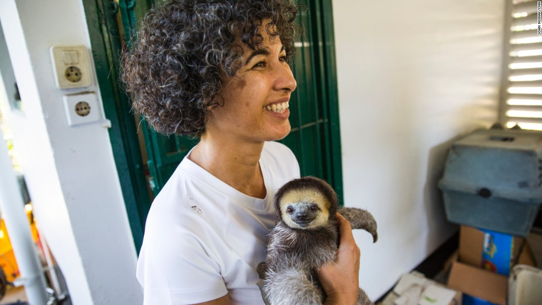 "In Suriname, <a href=""http://www.cnn.com/2015/08/06/world/cnn-heroes-pool/index.html"">Monique Pool </a>has been a passionate sloth protector since 2005.  She also takes in anteaters, armadillos and porcupines.  Her volunteer group has rescued, rehabilitated and released more than 600 animals."