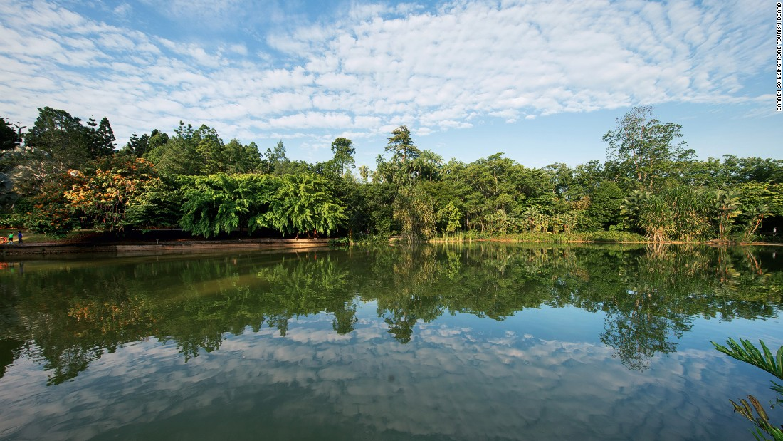 More than 4.4 million people visit the Singapore Botanic Gardens every year to enjoy the spectacular displays of flora.