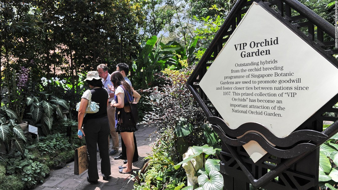 Located within the Singapore Botanic Gardens,  the National Orchid Garden has one of the largest collections of orchids in the world, with more than 450 species. One of the top attractions is the VIP Orchid Garden, featuring specially bred hybrids named after celebrities and heads of state who have visited Singapore.
