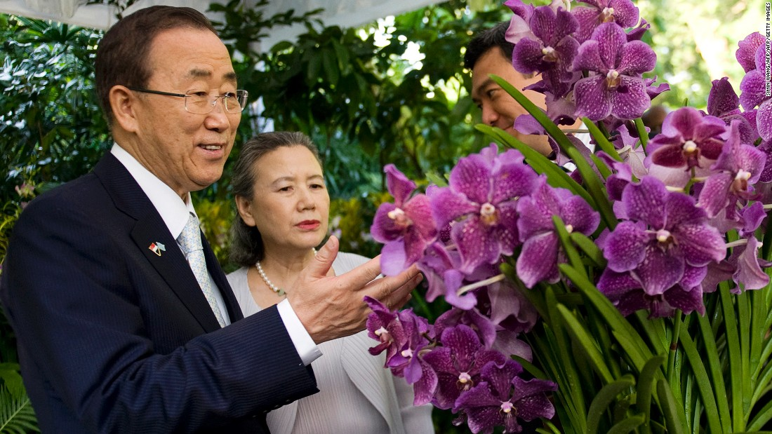 This hybrid was named after UN Secretary General Ban Ki-moon and his wife Yoo Soon-taek.