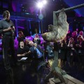 cnnheroes tribute sloth rehearsal crowd