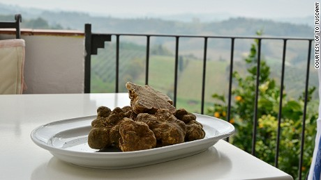 Joining the 'gold rush' with Italy's Tuscan truffle hunters