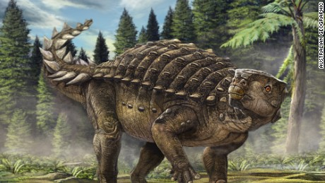 New dinosaur named 'Kunbarrasaurus' discovered