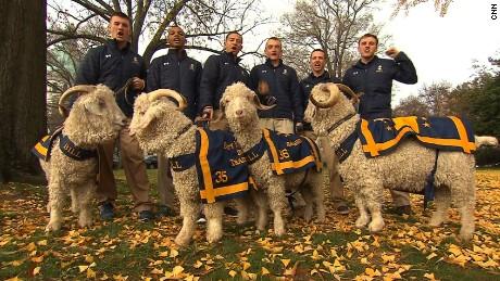 Bill the Goat Navy Army NATPKG_00000000