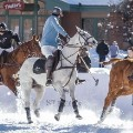 snow polo horses riders