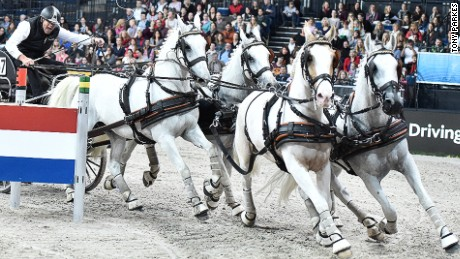 Extreme horsepower: Love and carriage hits London