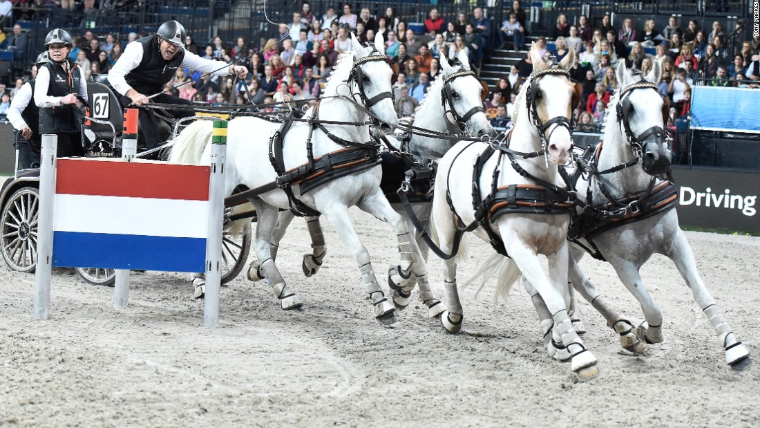 IJsbrand Chardon is a 26-time Dutch champion and has won numerous titles in both dressage and carriage driving.
