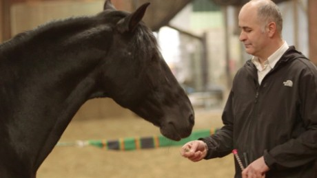 Training the brave 'Game of Thrones' stunt horses