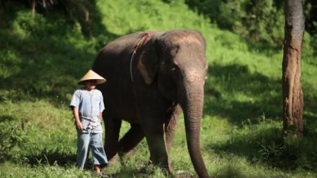 four seasons tent camp thailand travel orig_00000224.jpg