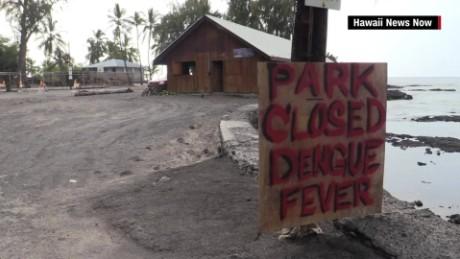 hawaii dengue fever big island outbreak pkg_00000515