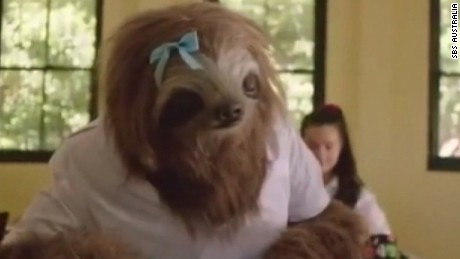 stoner sloth lights up internet cnni walker pkg_00001722