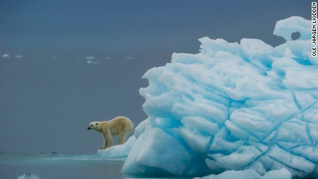 When polar bears outnumber humans, you know you're in for the experience of a lifetime.