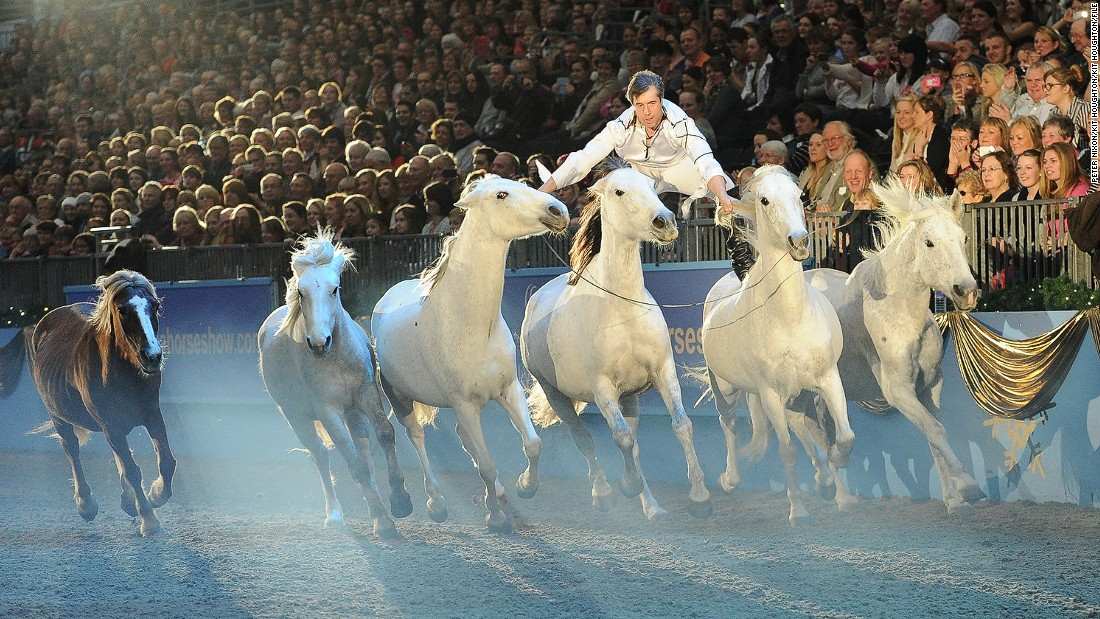 Meet the amazingly talented Jean-Francois Pignon -- a man who can ride two horses at the same time.
