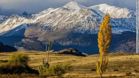 Parque Patagonia: Spectacular Chile.