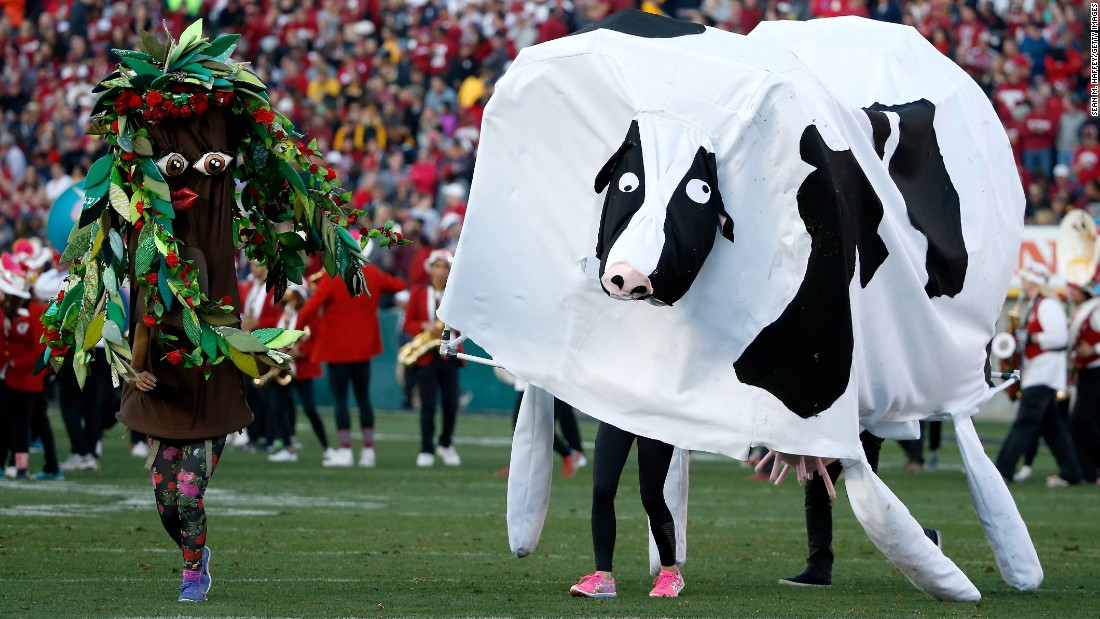 Colorful characters perform with the Stanford band during the Rose Bowl halftime show on Friday, January 1.