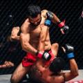 Bashir Ahmad MMA 2