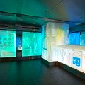 Norwegian cruises SVEDKA/Inniskillin ice bar