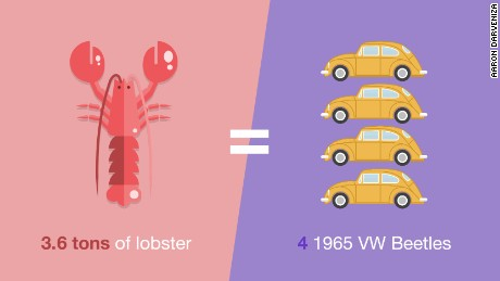 Chicken-or-Fish_lobster_v2