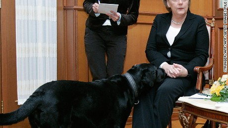 German Chancellor Angela Merkel looks uncomfortable as Russian President Vladimir Putin's dog comes close during a press conference in Sochi in January 2007.