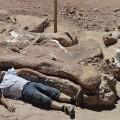 titanosaur discovered site