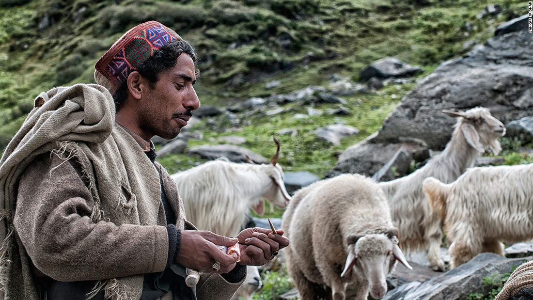 Sanju, a Gaddi shepherd we follow from Bara Bangal to the outskirts of Dharamshala, gives his herd a break after crossing the Thamsar Pass.<br />