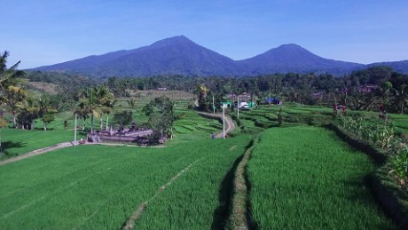 See Bali's stunning rice fields from above