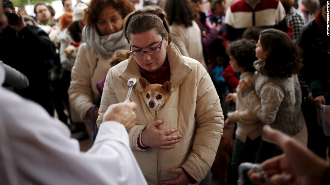 A woman holds her dog as it is blessed by a priest outside a church in Malaga, Spain, on Sunday, January 17.