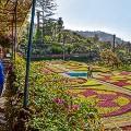 ardim-Botanico-da-Madeira_F