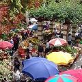 Mercado-dos-Lavradores---Mu