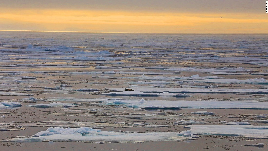 In 2015, the multi-year ice has receded far north, allowing us to press deeper into the Arctic than expected.