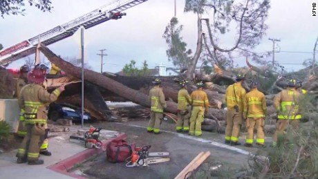 driver killed when tree falls on car kfmb dnt_00010725.jpg