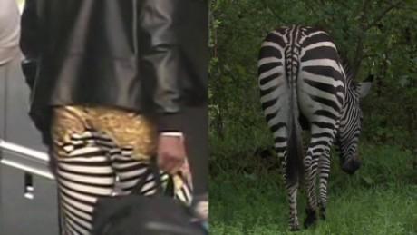 cam newton zebra pants moos pkg erin_00014708.jpg