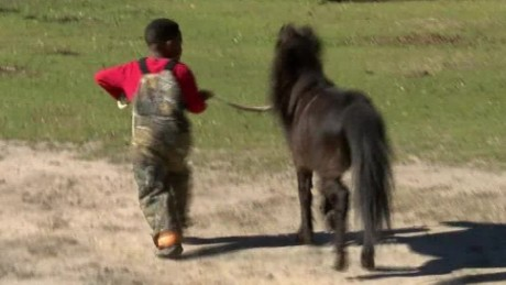 5-year-old boy holds wedding for his pony