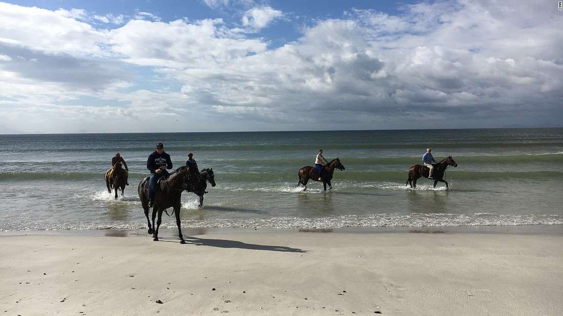 """It's just such a refreshing feeling for the horses. The cold water and the movement of the ocean takes down any inflammation, any infection,"" Snaith says."