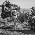 fantasia horse festival