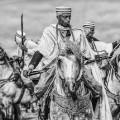 fantasia horse festival guard