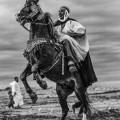 fantasia horse festival leap