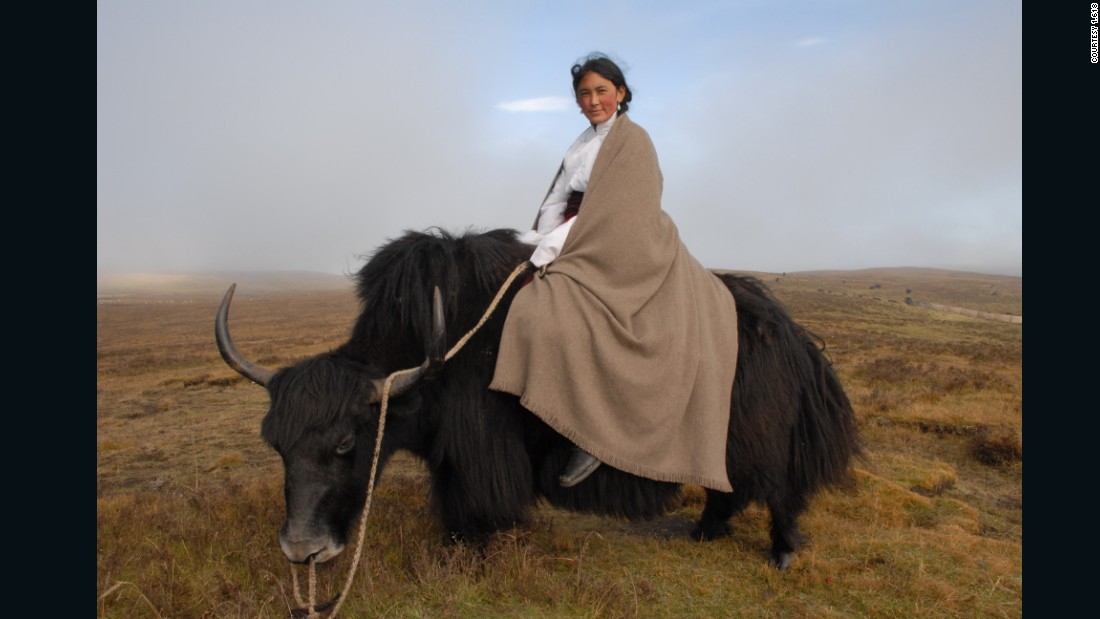 """<a href=""http://norlhatextiles.com/"" target=""_blank"">Norlha </a>means 'Wealth of the Gods.' It is also what the nomads call their yaks, who provide them with all their needs: milk and butter, meat, hair and khullu (an under-layer of soft, fine fur). Norlha, which provides jobs with fair wages to the local population, has become a source of prosperity to the village of Ritoma, China. To the rest of the world, the yak's precious khullu reveals itself as a fiber with the quality and depth of a hidden treasure combining quality, warmth, softness, and beauty."""
