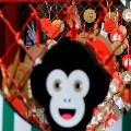 Year of the Monkey Lunar New Year
