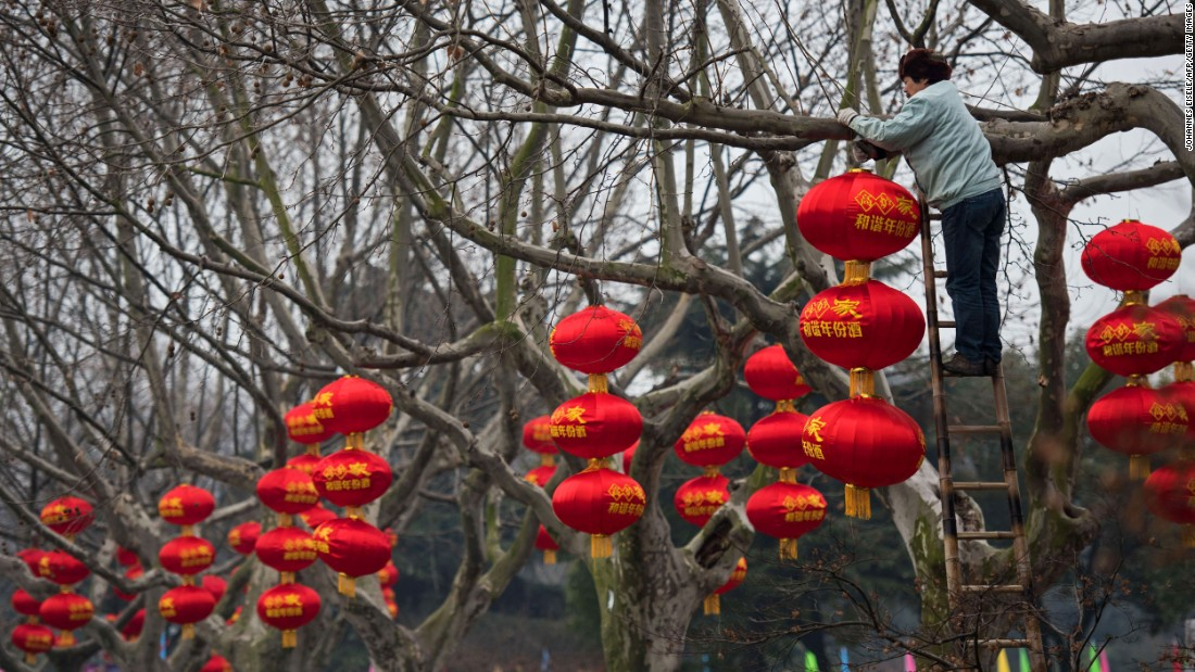 A worker decorates trees with red lanterns in a park in Changzhou, China, on February 4.