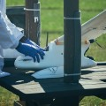 Drone flyign blood samples