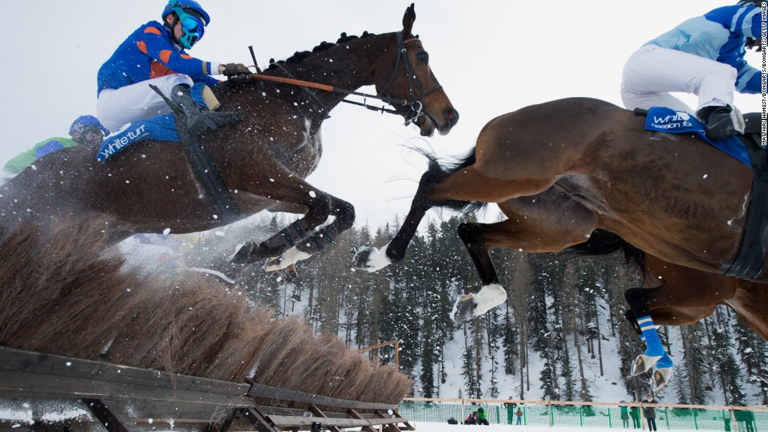 Before setting hoof onto the snow, competing horses have to undergo a change of shoes, with regular horseshoes replaced by a pair containing winter grips and a unique layer of silicone to prevent snow sticking to hooves.