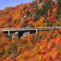 Blue Ridge Parkway RESTRICTED