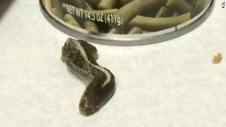 dead snake head  green beans can pkg_00005621