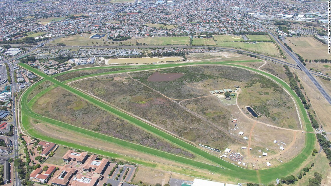 "Kenilworth Racecourse and the conservation area, as seen from above. The fynbos in the Western Cape is more botanically diverse than the tropical rainforests of South America,<a href=""http://wwf.panda.org/what_we_do/where_we_work/fynbos/"" target=""_blank""> according to the WWF</a>."