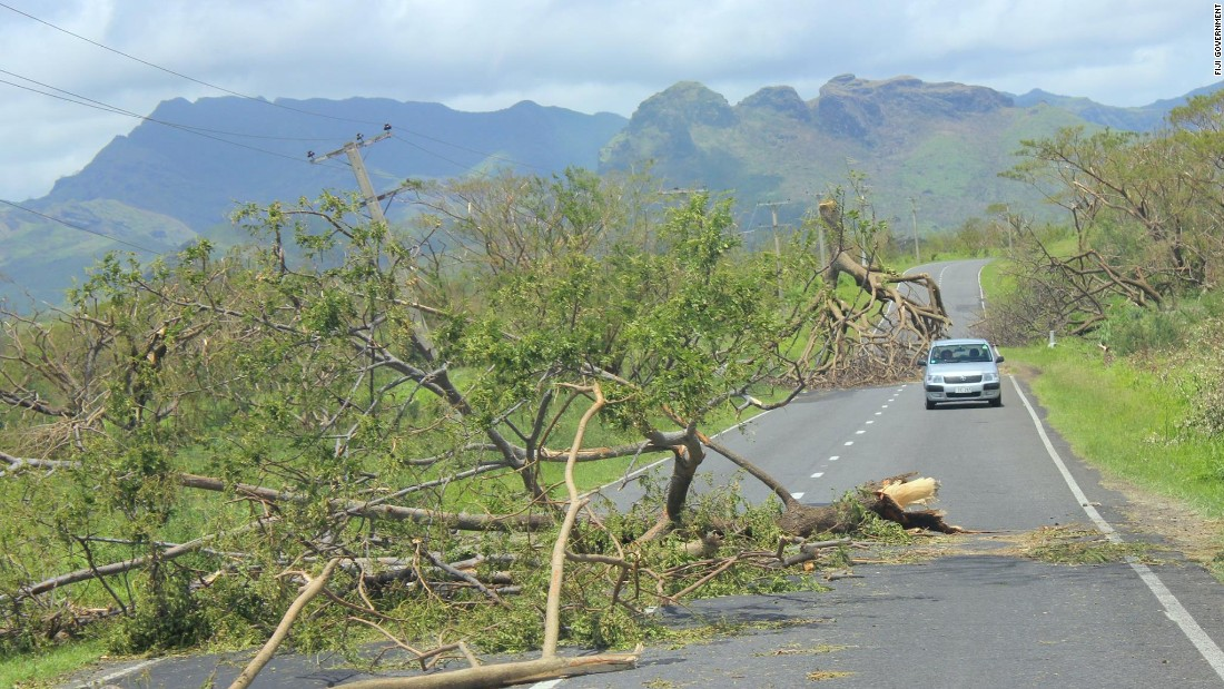 A car drives down a road avoiding two large trees felled by the cyclone.