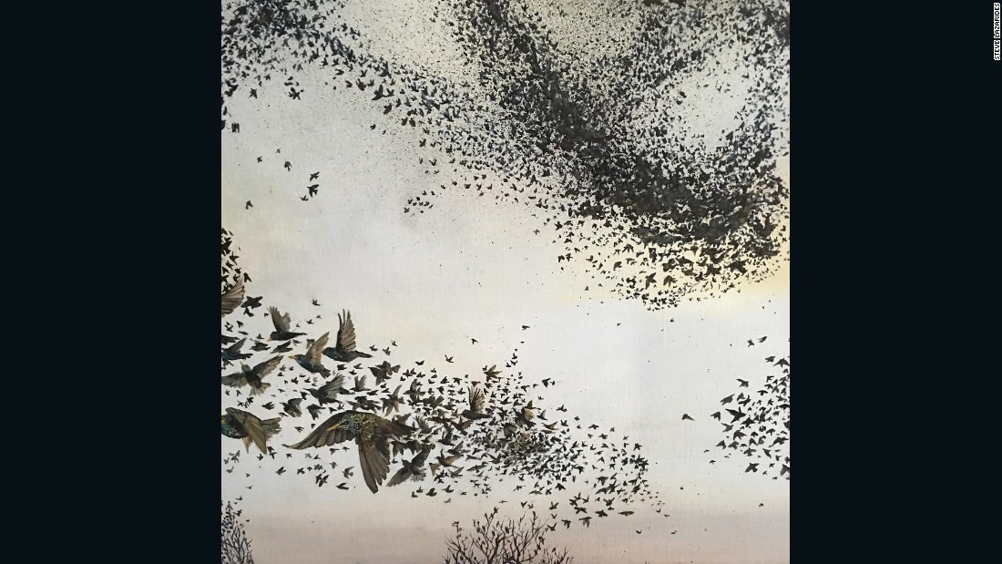 """""""Being a die-hard birdwatcher, this painting by Xenz in our tenth anniversary show is very close to my heart. It reminds me a great deal of my childhood when there were still millions of wonderful birds flying around. Unfortunately I'm not sure that's the case anymore."""""""