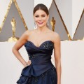 oscars red carpet 2016 Sofia Vergara